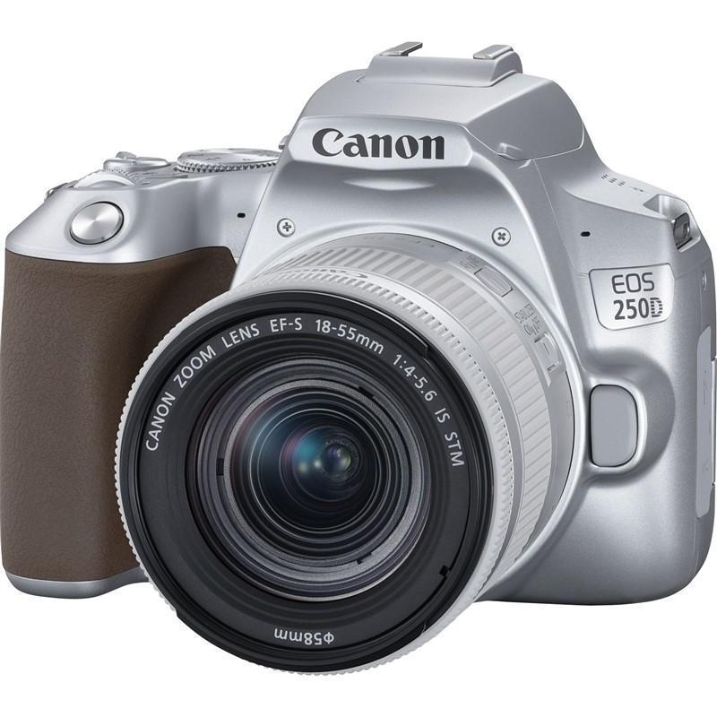 Canon EOS 250D + 18-55mm IS STM, Stříbrný + Servis plus zdarma
